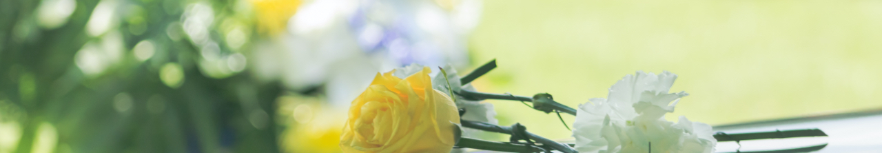Yellow and white flowers resting on a coffin