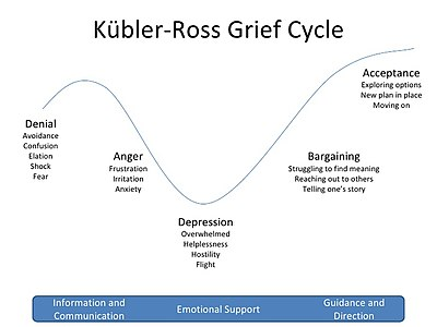 Kubler Ross Grief Cycle graph