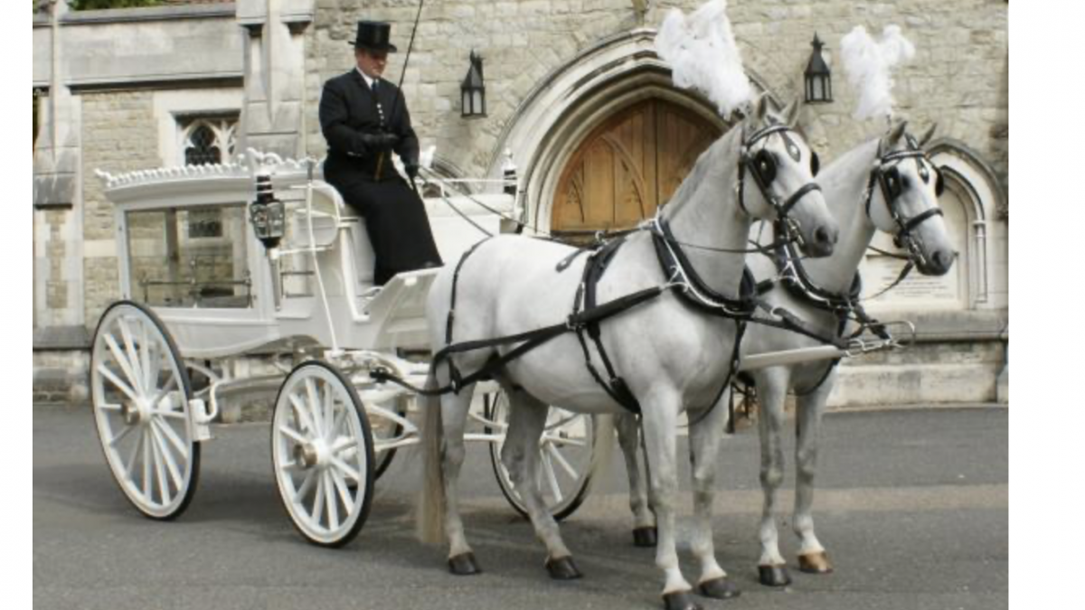 White horse drawn funeral carriage pulled by white horses and driven by a undertaker dressed in black with a top hat